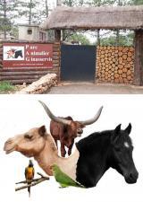 parc-animalier-ginasservis-animaux-famille-enfants-var-83-sorties